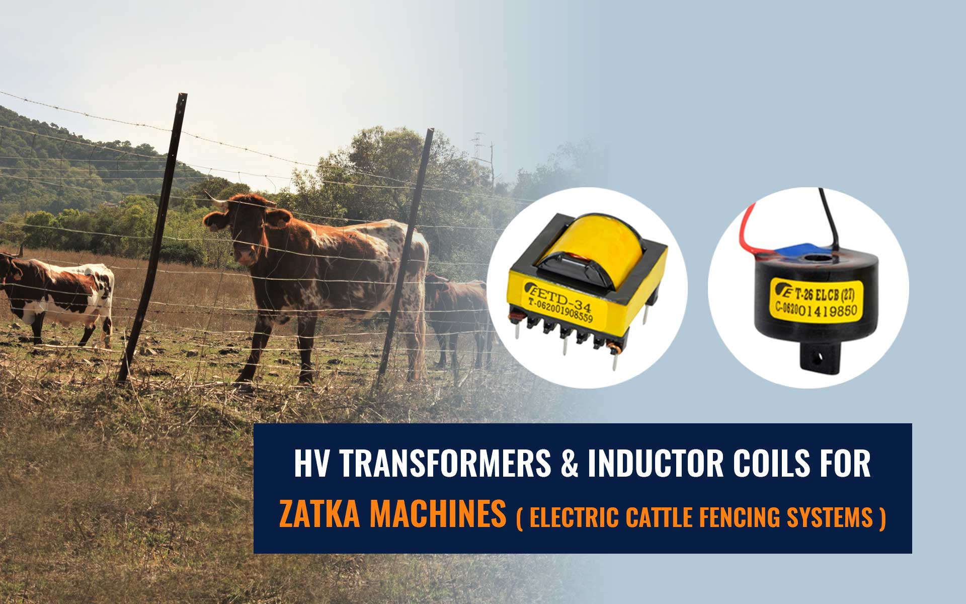 HV Transformers & Inductor Coils for Zatka Machines